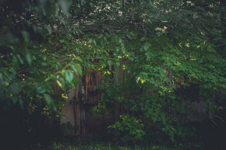 Moody Monday, Photo project, Moody, dark, abandoned garage, dapple lighting, outdoors, hidden doorway